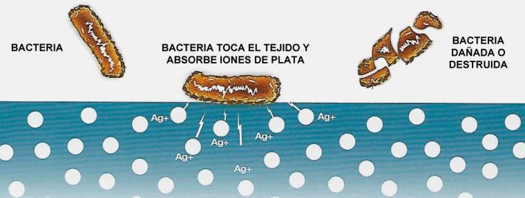 funcionamiento tejido antibacteriano